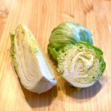 レタス・キャベツ・白菜の画像