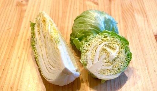 キャベツ・レタス・白菜のカロリーと栄養比較:よく似た3種の野菜でもキャベツが2倍近く高カロリーです。
